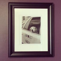 Unique Golden Retriever Framed Photograph
