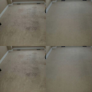 CARPET STEAM CLEANING - UPHOLSTERY -TILE AND GROUT Kitchener / Waterloo Kitchener Area image 9