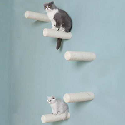 Gato Poste Rascador Árbol Casa Sisal Mascota Gatito Torre Escalada Juguete