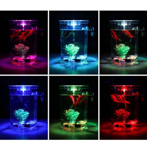 Creative Ecology Mini LED Fish Tank Luminous Glass Tank Aquarium Fish Tank 5