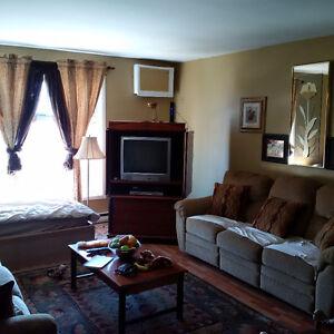 2 Bedroom Furnished Spacious Apartment - Short Term Rental Windsor Region Ontario image 5