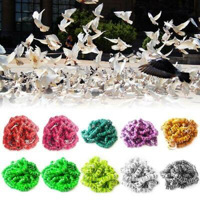 50Pcs Aluminum Bird Foot Rings Racing Pigeon Leg Clips Identify Number Bands