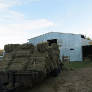 Square hay mix bales