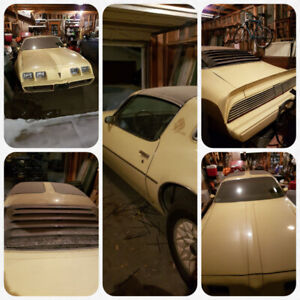 1980 Survivor:  1980 Firebird, low mileage , lady owned since 82