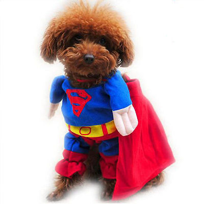 SUPERMAN COSTUME FOR DOGS (OR CATS)   FOR SMALL / MEDIUM DOGS DCL - Superman Costume For Dogs