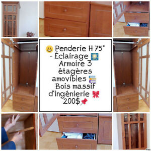 """Commode   Armoire   Penderie   Garde-robes     H : 75""""   200$"""