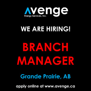 Branch Manager   Avenge Energy Services, Inc.