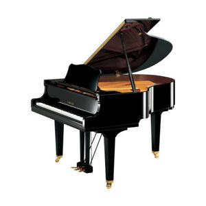 "YAMAHA GC1M 5'3"" Grand Piano in Beautiful Polished Ebony Finish"