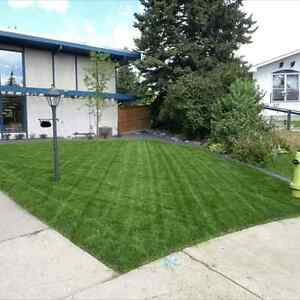 Lawn Care Services Calgary