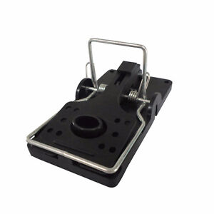 Pack of 6 rat traps, cheap this kind are usually 10 bucks each
