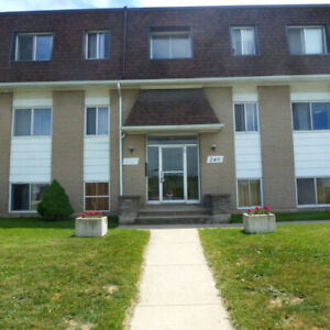 2 Bedroom Apt. - SPACIOUS, INCLUSIVE, SEPT 1ST!