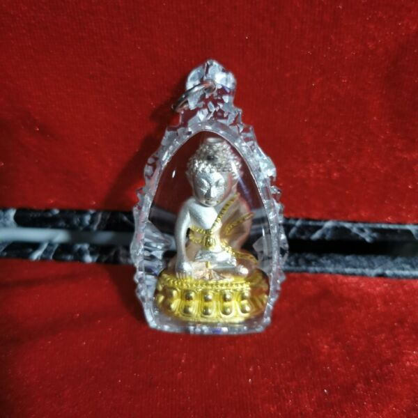 3k Phra Kring comes with Magnifying Effect Special Waterproof Casing