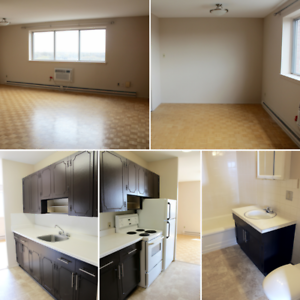 Large Two Bedroom Suite in the heart of  Osborne Village!