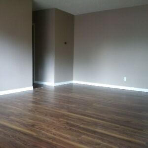 Nice 1 bedroom apartment with a balcony at 106 Ave 116 street Edmonton Edmonton Area image 2