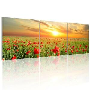 Unframed Canvas Wall Art Abstract Print Painting Picture Poster Poppy Flowers