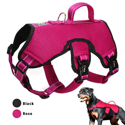 Pet Web (Web Master Reflective Pet Dog Harness Quick Fit Padded Adjustable for Dogs M L)