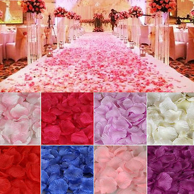 Fake Flower Petals Wedding Silk Decoration 1000pcs Rose Confetti Party Bulk](Bulk Confetti)