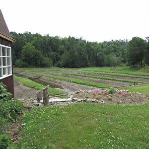Cabin and fish farm on 8 acres! Cornwall Ontario image 8