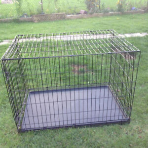 Large Dog Cage - almost new