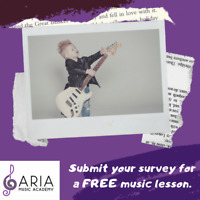 FREE MUSIC LESSON!!!