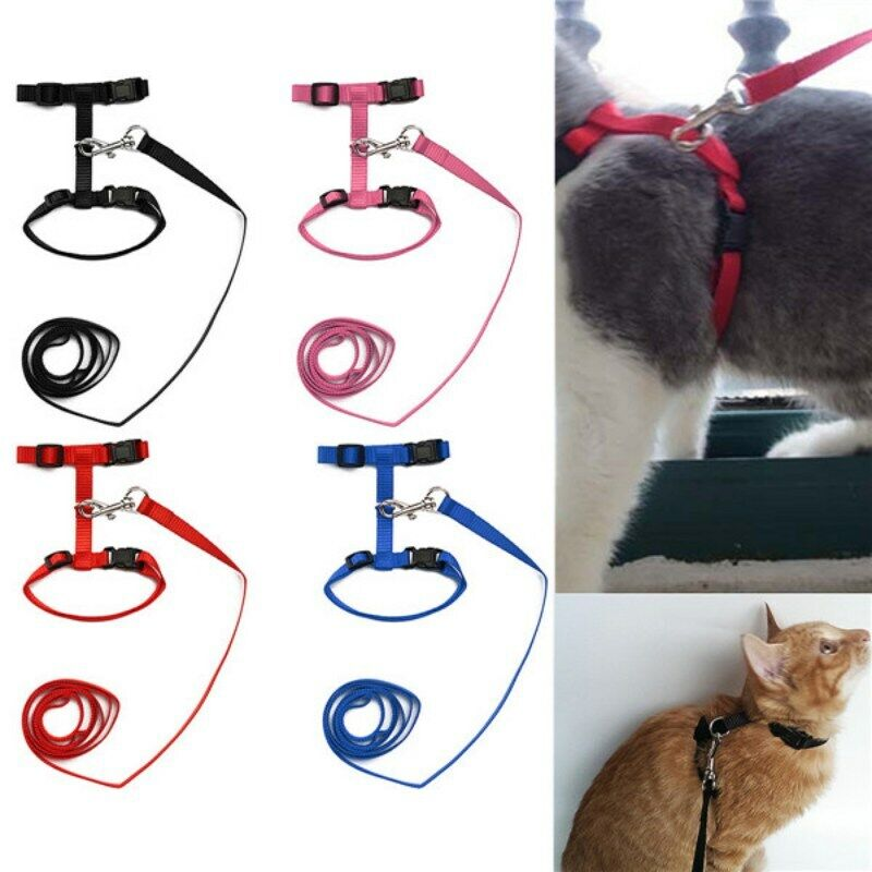 Pet Cat Puppy Adjustable Nylon Harness Collar Leash Lead Safety Walking Rope