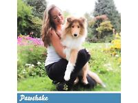 Pawshake are seeking Pet Sitters and Dog walkers! Sign up today! Free insurance incl. Barnstaple.