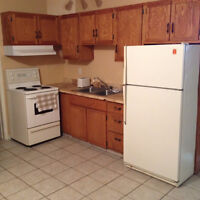 Furnished bachelor - Central Moncton (near Oulton's, UdeM)