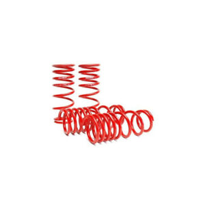 Skunk2 Lowering Springs Honda Civic (1992-1995)