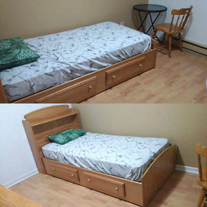 Roommate wanted in clean 4 1/2 duplex - please read ad, Montreal