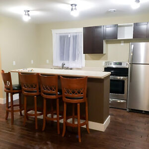 Modern, renovated 2 br flat on Herring Cove Rd, Spryfield Sept1