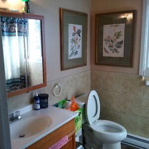 2 Bedroom Furnished Spacious Apartment - Short Term Rental Windsor Region Ontario image 8