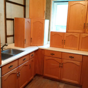Oak Kitchen Cabinet Set with Stove and Dishwasher