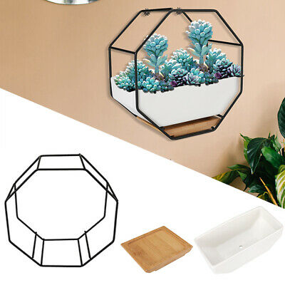 Wall Planter,ceramic Succulent Flower Pot Air Plant Container Hanging Vase +tray