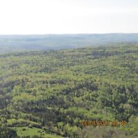 250 ACRES OF WOODLAND FOR SALE NEAR SUSSEX, NB