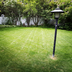 Quality Lawn Care Services Calgary