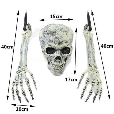 2018 Horror Buried Skull Alive Skeleton Garden Yard 3PCS Good Global Best Play