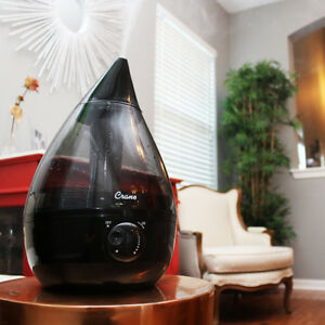 humidifier (fan or ultrasonic)
