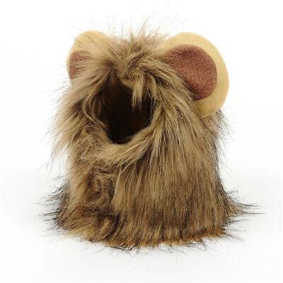Haustier Hund Katze Hut Kostüm Löwe Mähne Perücke Kostüm Halloween Dekoration