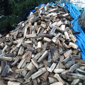 FIREWOOD/ CANADA DAY WEEKEND/ BEST DEAL WOOD $5/$35 WOW!