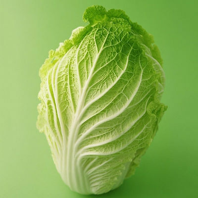 Cabbage 200 Seeds garden Organic Plant Seed Survival Heirloom Vegetable M130 for sale  Shipping to United States