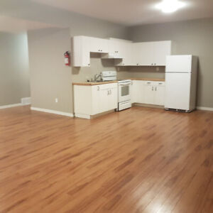 One large bedroom basement suit In Batch