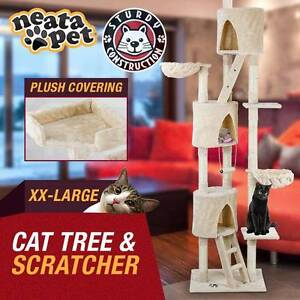 CAT TREES from $59 - FREE PICK UP PENRITH Penrith Penrith Area Preview