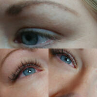 25 % off of Damage free lash extensions