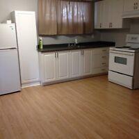JULY 1 - Reno'd Basement suite
