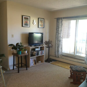One bedroom in a clean cozy apartment just off whyte