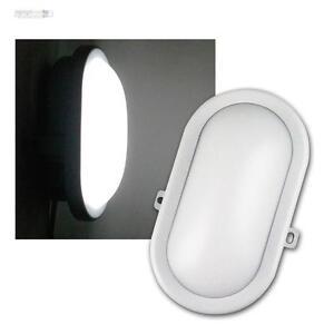 LED-Lampara-de-Zonas-humedas-oval-blanco-10w-700lm-BODEGA-luz-sotano-Humidor