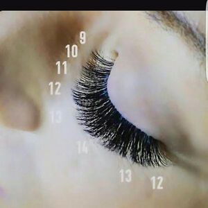 Eyelash extentions 50% off!! London Ontario image 1