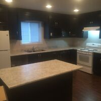 3 bed 2 bath $1,450 for rent