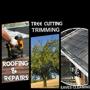 Eavestrough Cleaning & Repair * Tree * Roofing Service
