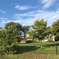 Long Point Cottage DISCOUNTED weekly-monthly stays Fall & Winter
